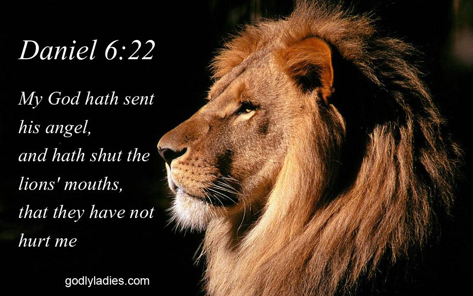 Daniel 6 22 KJV Bible Verse