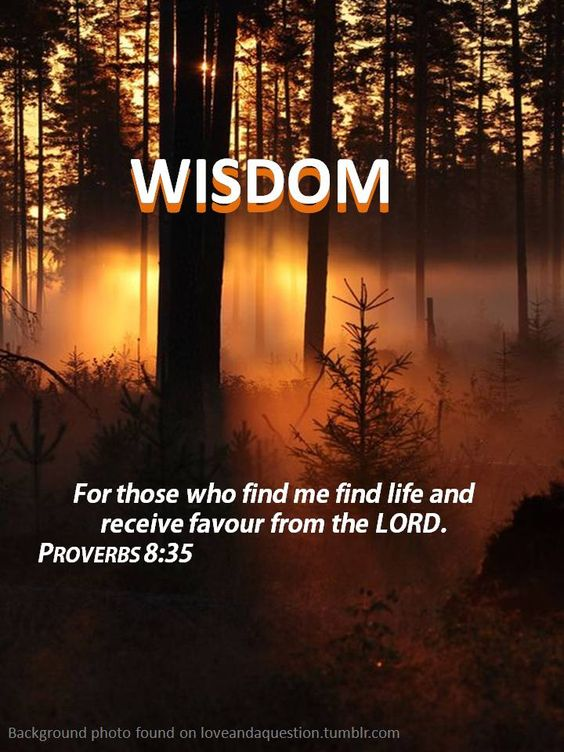 Proverbs 8 35 - Godly Ladies